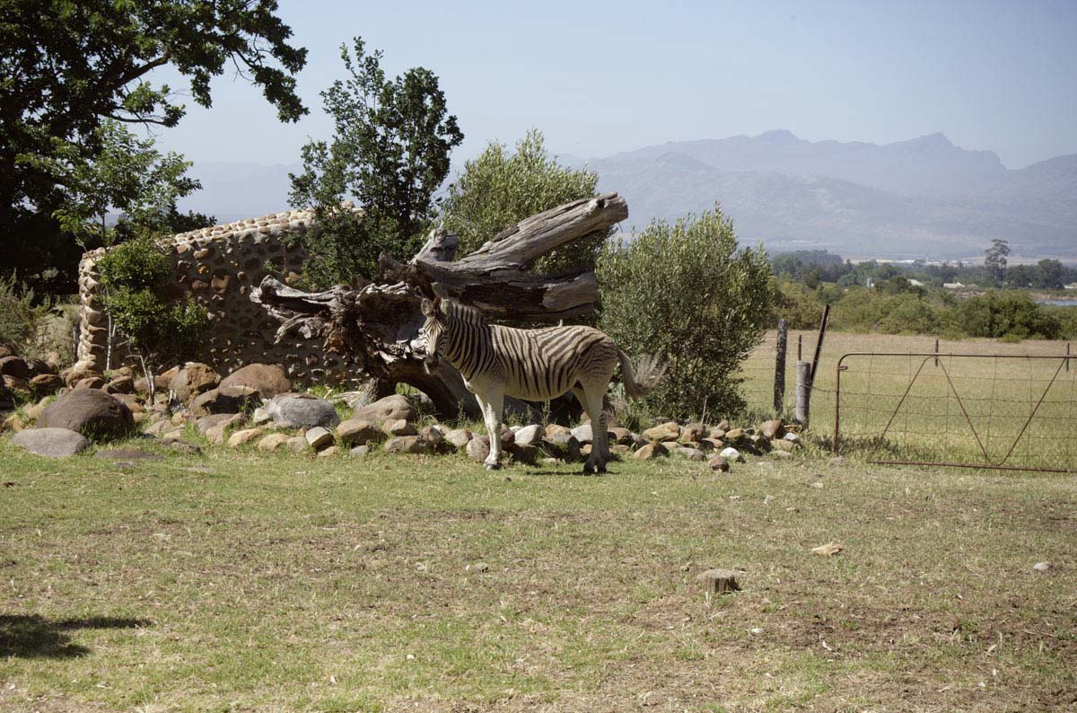 Travel _01_South Africa_02
